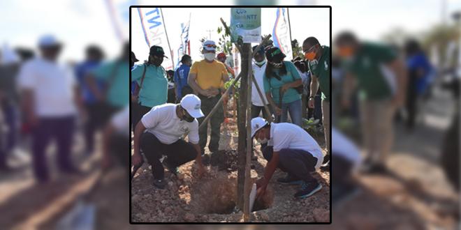 Bank NTT Bantu Hijaukan Kota Kupang Melalui Penanaman 2000 Pohon