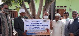 Berbagi Kasih di Perayaan Idul Adha, Bank NTT Serahkan Hewan Qurban